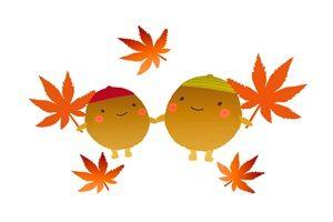 11月29日 紅葉行楽弁当!